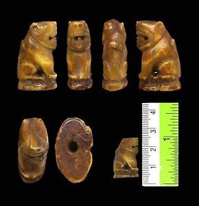 Takrut Carved Tiger Pig Tooth Talisman LP Pern Wat Bangpra Thai Amulet
