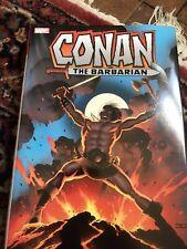 Conan the Barbarian Omnibus HC 1B-1ST NM 2018 Stock Image