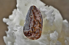 Mexican Crazy Lace Agate Free Form Cabochon 15 grams 53.69 X 29.09 X 6.02MM