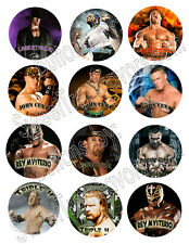 WRESTLING WWE Party Supplies 12 PINS Buttons FAVORS Decoration Birthday Treats *