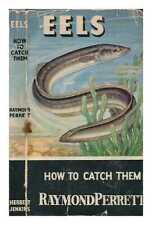 Eels - How to catch them