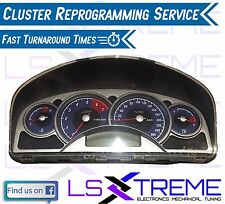 VY Commodore Cluster Reprogramming Service Executive SS S SV8 Acclaim Calais