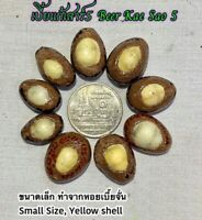 Magic Ball Amulet Sapindus Seed Phra AJ O Thai Protect Ghost Demon Evil Spirit