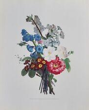 """Jean-Louis Prévost Vintage Floral Print 16"""" by 20"""" Palais du Tribunat, No 20"""