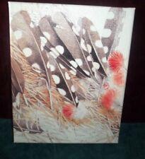 "Marjolein Bastin Nature's Sketchbook 8"" x 10"" canvas print Feather"