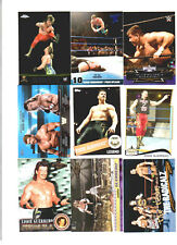Eddie Guerrero Wrestling Lot 9 Different Trading Cards 4 Inserts WWE WCW EG-E1