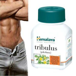 Natural Tribulus Terrestris Boost Man Libido Stamina Sexual Desire Tablet x 60