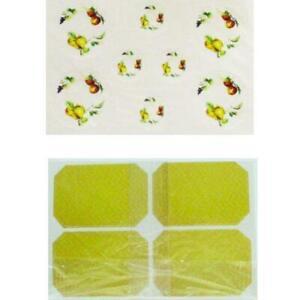 Fruit Paper Plates Place Mats CLA90720 Mini Collectibles Dollhouse Miniature