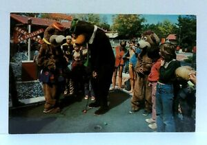 Jellystone Park Camp-Resort Luxury Camping Yogi Bear Postcard