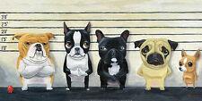 DOG ART PRINT: The Lineup by Brian Rubenacker 12x24 bulldog pug chihuahua Poster