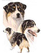 "AUSTRALIAN SHEPHERD Multi DOGs (BlueMerle).TWELVE Identical 6"" Fabric Squares."