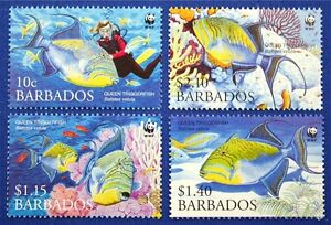 N067 BARBADOS 2006 WWF Queen Trigger Fish Mint NH