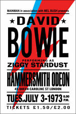 Large David Bowie Poster Music Poster Ziggy Stardust Rare Concert Collectable