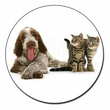 Italian SPINONE Dog and Kittens Fridge Magnet Animal Breed Gift Ad-sp1fm