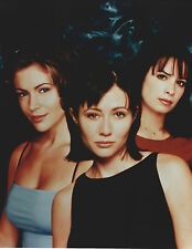 CHARMED CAST 8 X 10 PHOTO WITH ULTRA PRO TOPLOADER