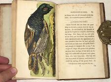 Gilbert White  A Naturalist's Calendar  First Edition  London 1795 Hand-colored