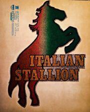 vTg Rocky Sly Sylvester Stallone Italian Stallion Boxing Robe Ds t-shirt iron-on