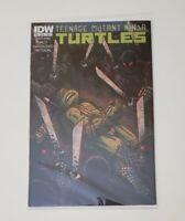 Teenage Mutant Ninja Turtles #23 Kevin Eastman IDW