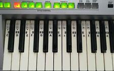 Piano Klavier Keyboard Noten Aufkleber Sticker C-D-E-F-G-A-H online Klavierkurs