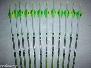 12 Gold Tip XT Hunter 340 Carbon Arrows Custom White Dip Crest/Blazer Vanes