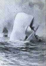 Moby Dick, The White Whale by Herman Melville +audio