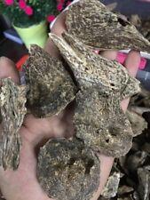100gr Viet Nam Natural High Oil Agarwood Aloeswood Oud chips - Grade A