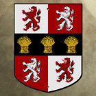 Murphy family coat of arms sign 24x32 shield crest Ireland