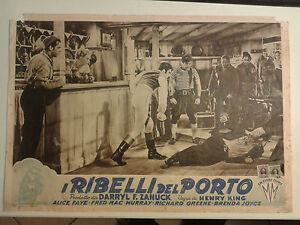 FOTOBUSTA CINEMATOGRAFICA I RIBELLI DEL PORTO 1949 HENRY KING ALICE FAYE U.S.A.