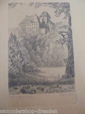 21454 Schloß BIEBERSTEIN orig Radierung sign Robert Langbein 33 x 25 cm