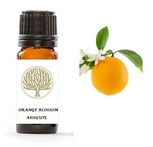 100% Pure Orange Blossom Absolute Oil
