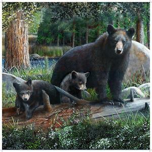 Marco Rustic Black Bear & Cubs Shower Curtain