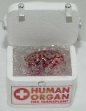 Dollhouse miniature handcrafted Medical BRAIN transport container box 1/12th