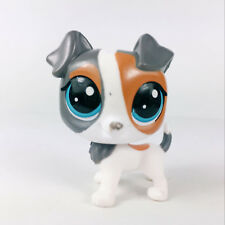 Original Littlest pet shop LPS in the City Scamps Russo #198 Figure Girl Toys