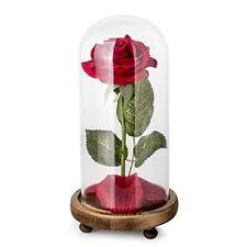 """""""BEAUTY AND THE BEAST"""" Full Kit, soie rouge rose et Lumière DEL avec Fallen pétales"""