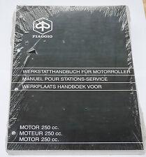 Werkstatthandbuch Motor 250 ccm Motorroller Piaggio 578475 neu