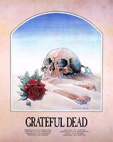 Grateful Dead 1981 European Tour Stanley Mouse Original Lithograph Poster