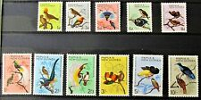 T9 -PAPUA N.G. 1964 / 65 SET OF 11 SUPERB MINT NEVER HINGED ON S/C