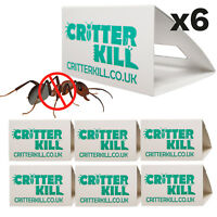 6 X ANT TRAPS KILLS ANTS CATCHER GLUE TRAP CRAWLING INSECT KILLER POISON FREE