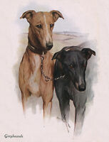 GREYHOUND CHARMING DOG GREETINGS NOTE CARD,TWO LOVELY DOGS