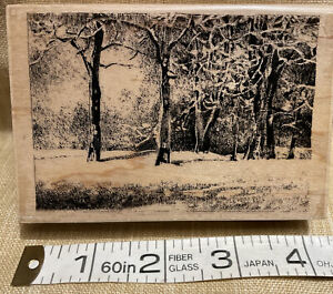 Snowy Park Rubber Stamp-Penny Black