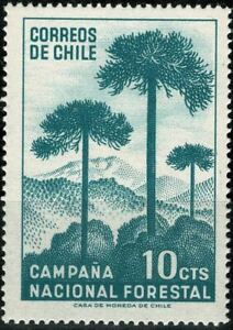 CHILI 1967 REFORESTATION   PA  YT n° 319 Neuf ★★ luxe / MNH