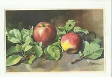 137903 stupenda cartolina artistica frutta di s. bonelli