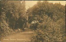 Sevenoaks. Fawke Common.  Vintage Postcard   AG.964
