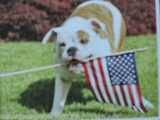 Bulldog with American Flag 100 piece puzzle *Ages  6+ The Patriot !