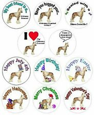 assortment of Chinese Crested stickers 315 pieces Waterproof 11 designs