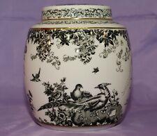Royal Crown Derby Black Aves Biscuit Ginger Jar MINT CONDITION