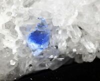 New Find Blue Phantom Beautiful White Chrysanthemum Quartz Crystal Cluster