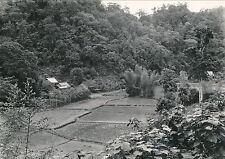 INDOCHINE c. 1930 - Entre Dong-Khé et Cao-Bang Tonkin - Div 3922