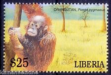 Orangutan, Critically Endangered, Monkeys, Wild Animals, Liberia Mnh - Auc17