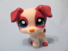 Littlest Pet Shop Jack Russell Terrier 1200 Authentic